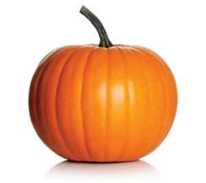 Orange pumpkin on white background. Fresh and ripe